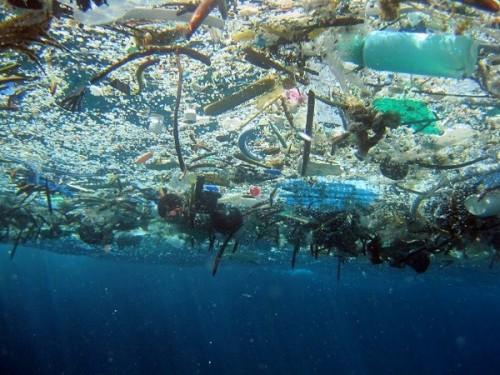 basura-en-el-mar-600x450