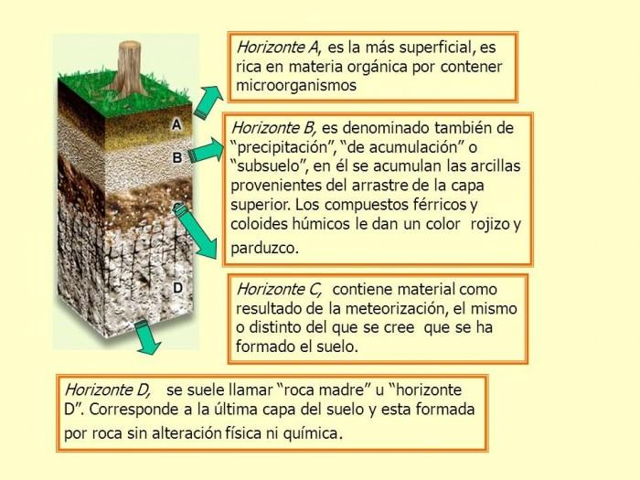 Im genes informativas de las capas del suelo donde est el for Materiales que componen el suelo