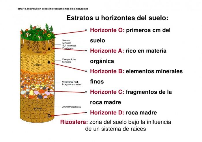 capastema-442-pdf-27-728