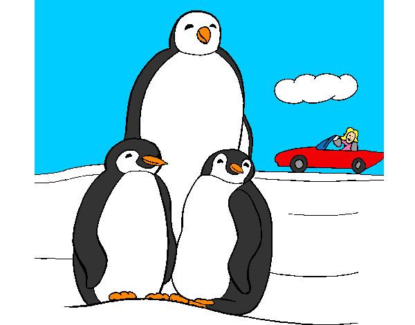 pinguino-animales-aves-pintado-por-mariana233-9749909