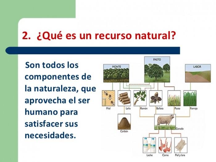 recursoagotamiento-de-los-recursos-naturales-4-728