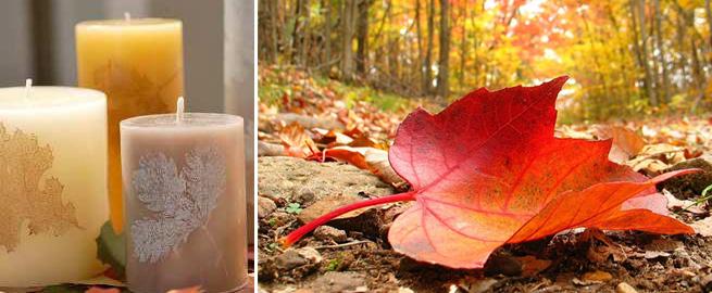 velas-con-hojas-secas