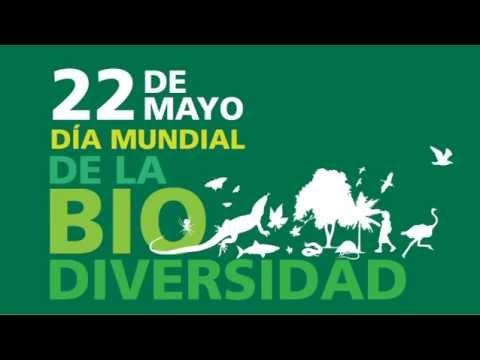 Resultat d'imatges de 22 de mayo dia de la diversidad biologica