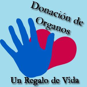 dona20110527130153-20080730105041-donacion-de-organos