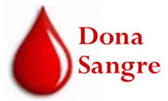 donar-sangre-segura1