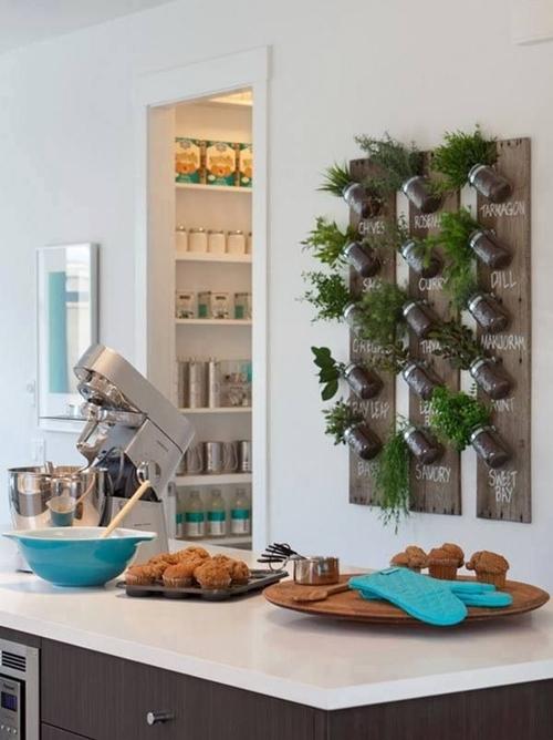 Ideas-para-cultivar-plantas-aromáticas-decorando-la-cocina-1