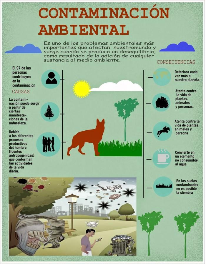 Contaminaci n del agua aire suelo ac stica y ambiental for Medio en el que habitan los arboles