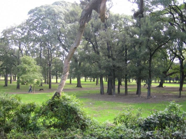 Bosques_Palermo