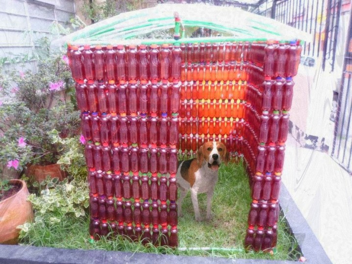 casita para perros