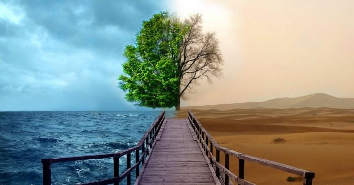 ecologiaplaneta-tierra