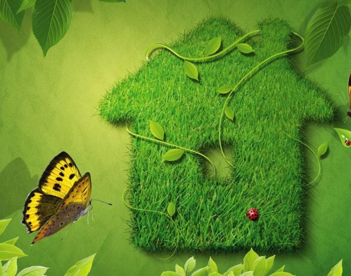 ecologia-155