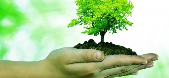 10 formas de cuidar el medio ambiente yahoo dating 2