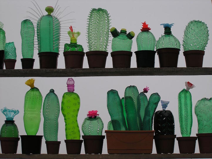 detalle-plantas-cactus-botellas-recicladas-veronikarichterova