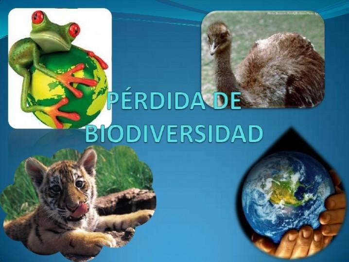 prdida-de-biodiversidad-1-728