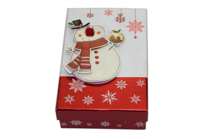 pl5500824-christmas_gift_recycled_cardboard_gift_boxes_telescope_for_girls