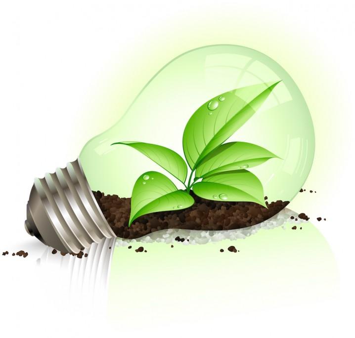 Ecología y educación ambiental: Importancia de la conciencia ...