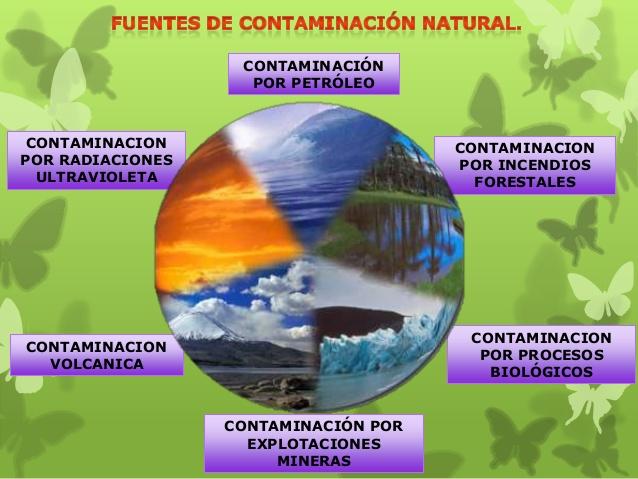 Contaminaci n qu es tipos causas c mo reducirla soluciones ecolog a hoy - Fuentes de contaminacion de los alimentos ...
